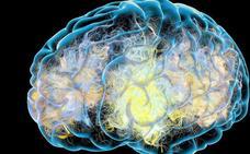 La relación entre el virus del herpes y el alzhéimer
