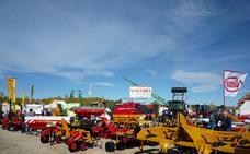 La Feria de San Martín vuelve a Mansilla de las Mulas