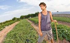 Las Cortes aprueban el desarrollo de un plan integral para la agricultura que favorezca el relevo generacional