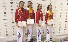 Dos oros y cinco medallas más para taekwondo leonés en Ciudad Real
