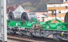 Fomento corta dos días el tráfico ferroviario entre León y Asturias por el riesgo de desprendimientos