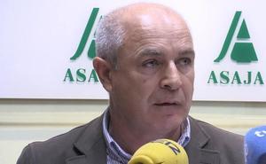 La bajada del precio de la remolacha reduce un 25% los agricultores y deja la fábrica de La Bañeza «infrautilizada»