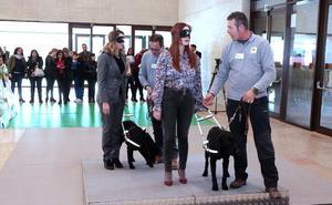 La ONCE celebra su 80 aniversario con una exhibición de perros guía en las Cortes de Castilla y León