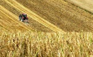 León lidera la titularidad compartida en explotaciones, que crece un 46,7% en la comunidad
