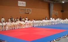 Tres centenares de judokas se 'disputan' la Navidad en León
