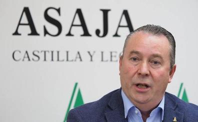 Asaja denuncia que la falta de ayudas reduce la llegada al campo a 433 jóvenes al año