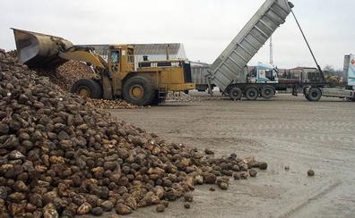 Los agricultores de Castilla y León protestan este jueves contra la bajada del precio de la remolacha