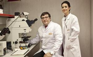Investigadores del CNIO confirman el nexo entre el cáncer de próstata y el cáncer de mama