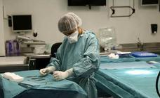 El Clínico de Valladolid realizó el pasado año 80 transplantes renales y 13 implantes cardiacos