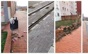 Ciudadanos reclama la limpieza del corredor ferroviario de Feve