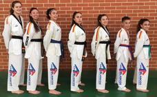 Siete taekwondistas de 'Los Blancos', en Zaragoza