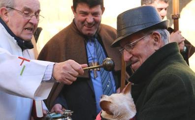 Que San Antón te bendiga, amigo