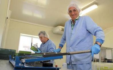 Los contratos de trabajo para personas con discapacidad aumentan casi un 35% en cuatro años en León