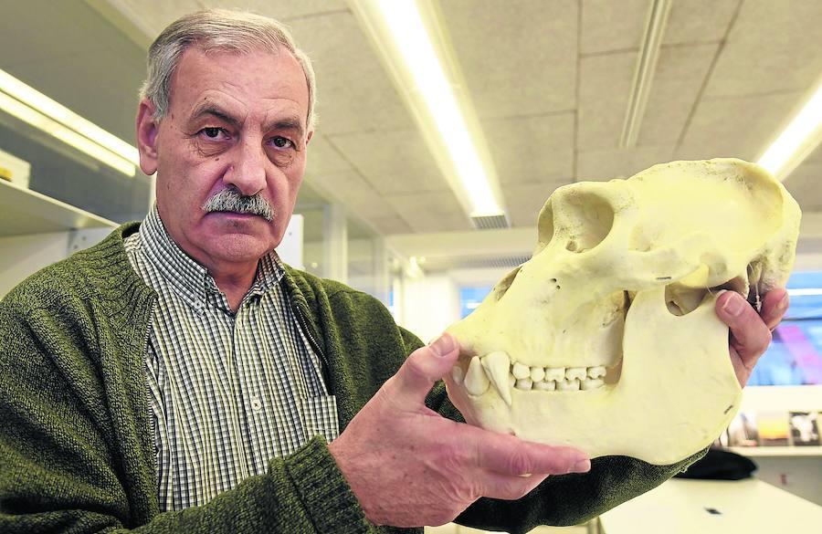 José María Bermúdez: «Hemos reducido la diversidad a una especie: nosotros. Eso es estar en peligro de extinción»