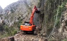 Una gran retroexcavadora comienza la limpieza del argayo del desfiladero de los Beyos
