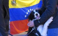Movimientos populares reclaman el fin de la injerencia de EEUU en Venezuela y del «golpista» Guaidó