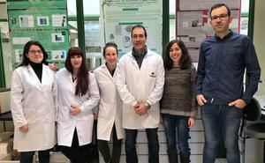 Investigadores del Instituto del Vino avanzan en el Biocentrol de la Filoxera del siglo XXI