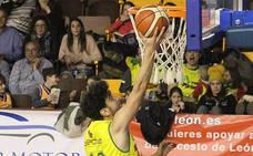 Basket León y Reino de León, en busca de victorias vitales