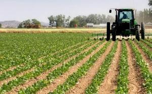 Asaja celebra su Asamblea General con buenas expectativas en el inicio de la campaña agrícola