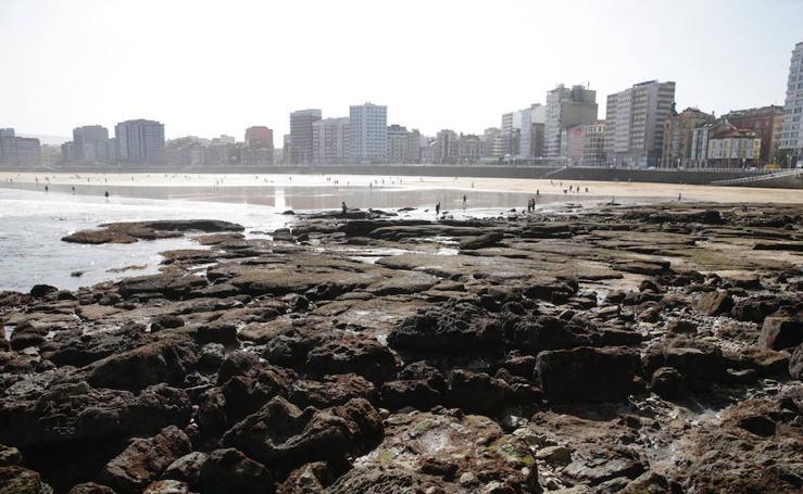 La primavera llega a Gijón