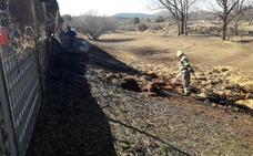 Un incendio atajado a tiempo este domingo calcina media hectárea forestal en Nogarejas