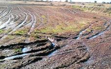 La Junta reconoce «excepciones» en la aplicación de los purines en coberturas con los cultivos ya implantados o sobre pastos