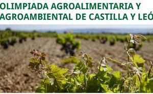León y Ponferrada acogen la fase local de la V Olimpiada Agroalimentaria