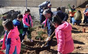 Los alumnos de tres colegios de La Bañeza celebran el Día del Árbol