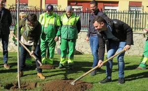 El PSOE de Castilla y León modificará la Ley de Montes y reconocerá a los bomberos forestales