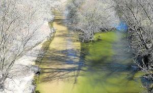 El riego se complica en el Bajo Duero y Las Cogotas pese al buen estado de la cuenca