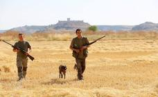 La Junta de Castilla y León avanza que «muy probablemente» se podrá volver a cazar en abril