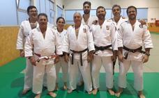Los maestros de judo se actualizan
