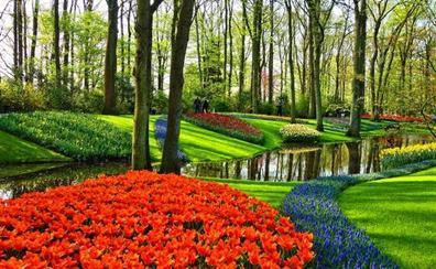 Las mejores escapadas por los alrededores de Ámsterdam