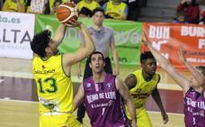 Basket León y Reino de León afrontan un final de temporada descafeinado