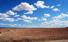 La lluvia pone en jaque el campo: el secano mira al cielo y el regadío teme la asignación de la CHD