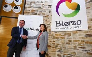 CaixaBank patrocina la renovación de las tarjetas de viticultor de más de 2.000 socios de la DO Bierzo