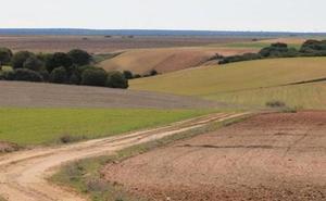 La Junta declara «urgente» la ejecución de la concentración parcelaria de Los Oteros II con una superficie de 34.000 hectáreas
