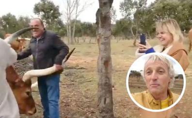Calleja asombra a Eugenia Martínez de Irujo con los bueyes de El Capricho