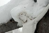 La nieve regresa a la provincia