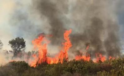 La caída de un rayo provoca un incendio forestal en Quintana del Castillo