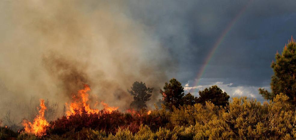 León registra 193 incendios forestales entre enero y marzo y la administración alerta de un verano 'caliente'