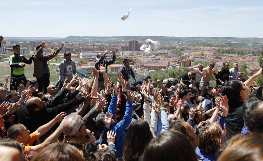 Palencia vive una pedrea de pan y queso marcada por el buen tiempo