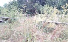 UPL exige que se acometa la siega y limpieza del Arroyo del Valle y del paseo del Carbosillo de San Andrés