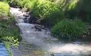 Un riachuelo de aguas cargadas de desechos contamina de forma permanente el Esla ante la falta de control