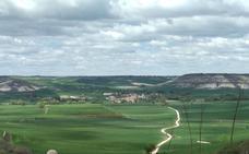 La falta de agua merma la campaña de cereal, que será «regular o mala» en Castilla y León