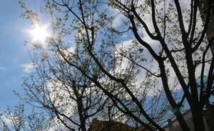 Tiempo fresco y con aire para disfrutar del fin de semana