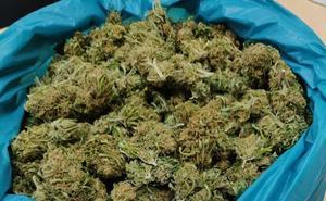 La Policía Local de La Robla se incauta de medio kilogramo de cogollos de marihuana