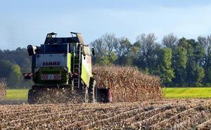 UCCL vaticina una caída del 60% en la producción agrícola esta campaña por la falta de lluvias, excesivo calor y heladas