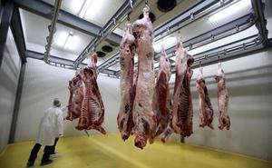 Los sacrificios animales aumentan un 61,69% en la última década en los mataderos de León