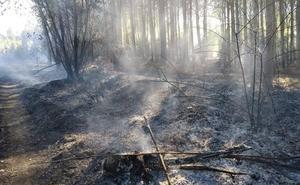 Un incendio forestal en Sardonedo pone en alerta a la localidad
